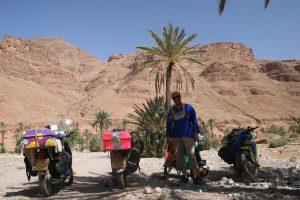 sahara oasis